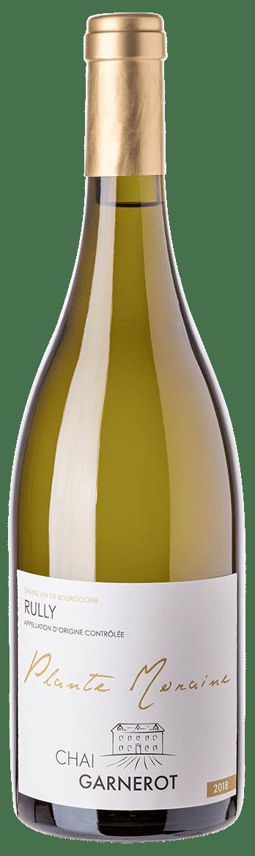 A la découverte de nos vins : Plante Moraine - Appellation Rully - vin blanc - vinifié et élevé par Chai Garnerot