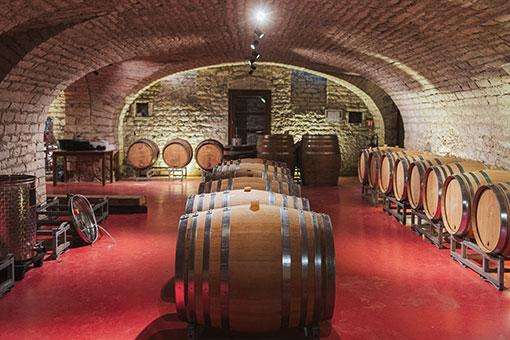 En cave, elevage des vins du Château de Garnerot - vendanges 2019